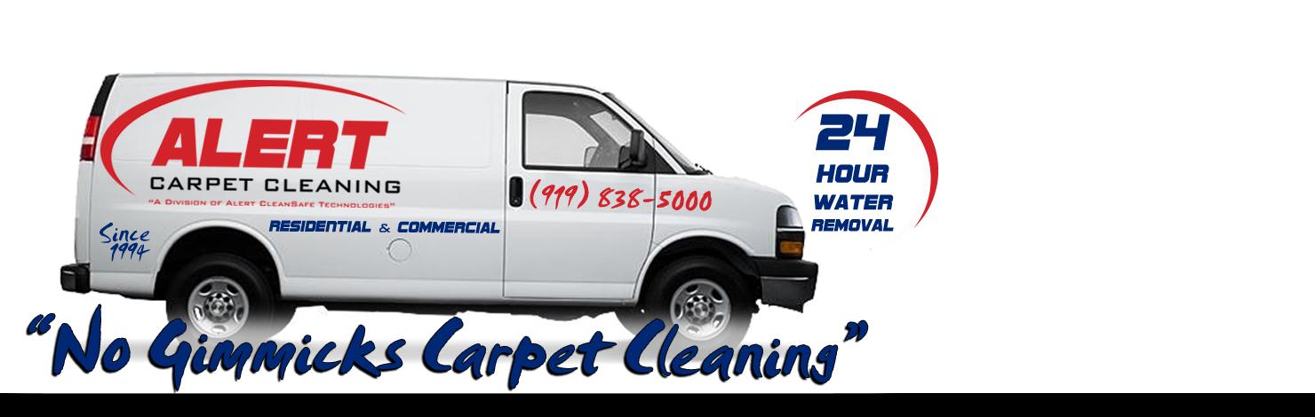 Alert Cleansafe Technologies Inc