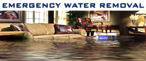 EMERGENCY-WATER-REMOVAL-460x195