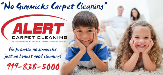 Residential Carpet Cleaning Raleigh