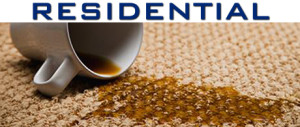 Alert Residential Carpet Cleaning,