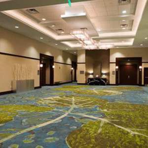 Convention Center Commercial Carpet Cleaning Services Raleigh, Cary, Durham NC