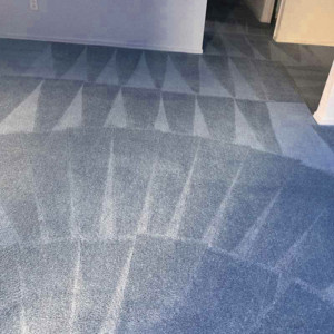 Quick No Gimmicks Carpet Cleaning Company Raleigh NC