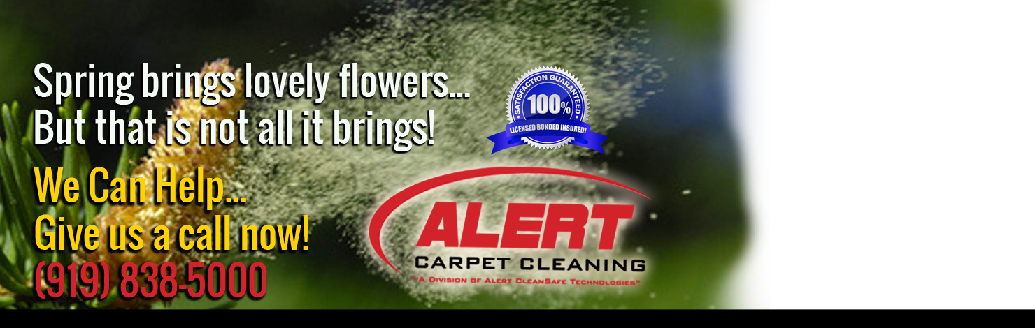 Pollen Spring Cleaning - Carpets, Vents, House