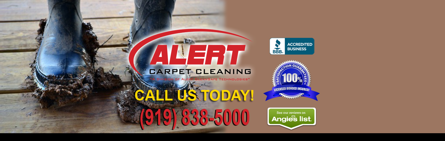 Fall Carpet Cleaning Specials Raleigh NC
