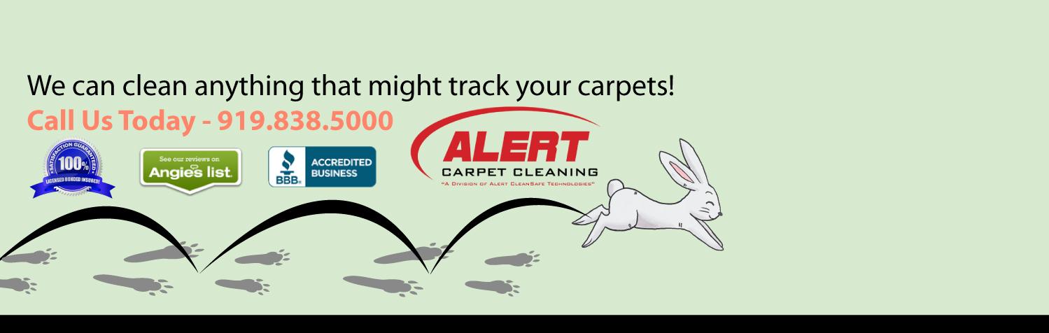 Easter-Slider-Alert-Clean-Safe-Tech